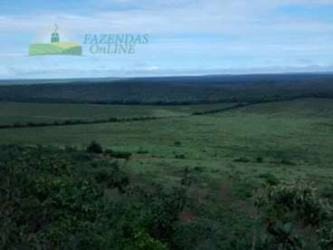 Fazenda soja 4800 hectares sapezal-mt